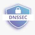 The Domain Name System Security Extensions (DNSSEC)